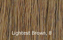 Level 8 Lightest Brown, #8